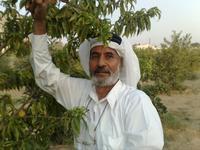 احمد سلام ابوقاسم