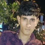 محمد نصر شعبان شراب